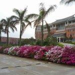 國立金門大學  National Kinmen University