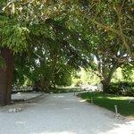 Beau parc ombragé