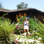 jardin devant bungalow