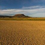 Moonlit mudflats