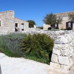 Stone walls & shrubbery