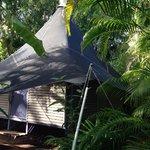 Our cute bush bungalow