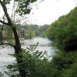 Walking along the river Aare
