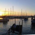 Der Hafen von Muggia
