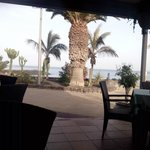 looking out from the restaurant