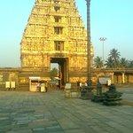 The evning sun shines on the Gopuram