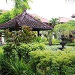 greenery surroundings
