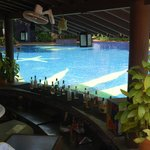 Pool with Bar table