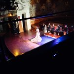 Flamenco performance at the Palace