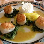 Scallops / Coquilles Saint-Jacques