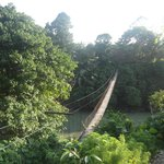 Rope bridge to Bamboo Lodge