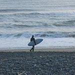 Loan Surfer LaPush Beach