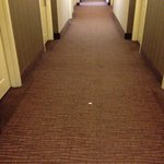 Dirty hallway, never vacuumed from Thur to Sun