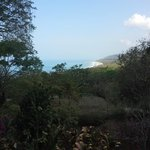 View from Villa#3