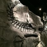 Black Beauty at Royal Tyrrel