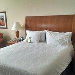 Foto de Hilton Garden Inn Atlanta East/Stonecrest