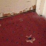 Room 259 carpet  - worn - and the door ! Shabby !