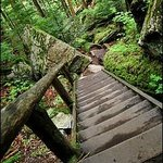Guided Hikes - The Stawamus Chief