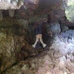 Morgan cove