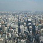 Nagoya city