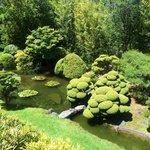 Beautiful well kept garden