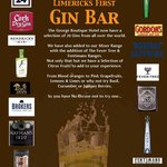 first gin Bar in limerick city