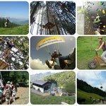 les activités du parc