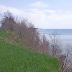 The lakeshore
