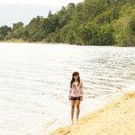 Pasir putih pepohonan hijau