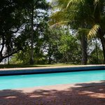 swimmingpool/garden