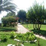 территория отеля Aventura park