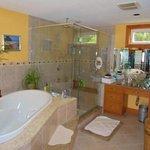 The beautiful spa/bathroom