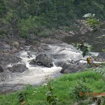 Rapids in front of the dining area