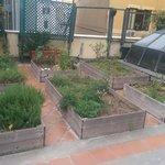 The Level 3 roof top garden