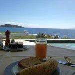 View from Calypso restuarant