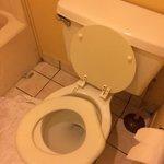 What toilet seat??