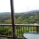 The lanai view