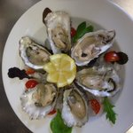 Fresh oysters in Toscana....