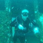 Self wreak diving
