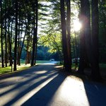 Beautiful Clear Creek State Park camping area