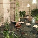 patio interno con cascada de agua y plantas