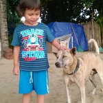 """My son with the cafe owners beautiful dog """"Pito"""""""