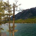 Premier Lake Provincial Park