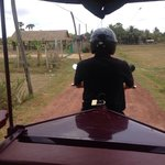 The complimentary tuk tuk into siem reap