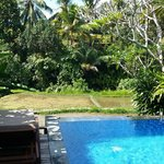 View from Villa overlooking pool over the Ubud landscape