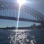 Sydney harbour cruising