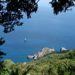 Sandy Cruz Trail