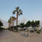 Parc grounds