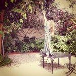 hibiscus house garden