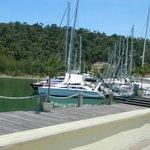 The marina at the resort.